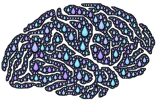 brain-962650__340